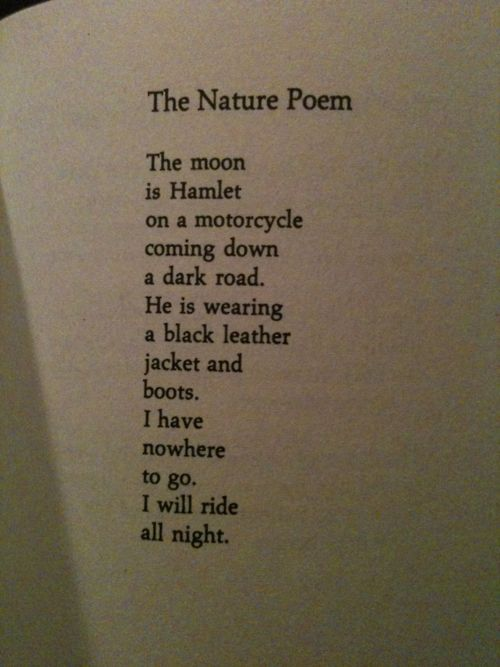 richard brautigan 8