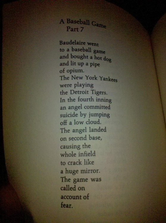richard brautigan 5